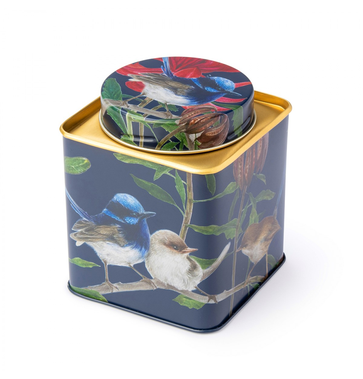 Australian birds blue wren small tea caddy