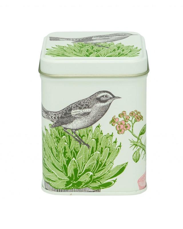Thornback & Peel cactus & bird 100g square tin